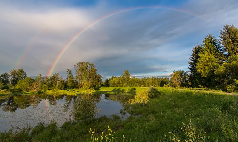 Jerry Sulina Park Rainbow