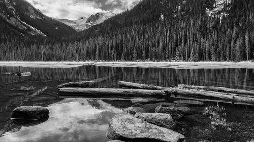 Black and white lake and forest landscape basic licence id p0968