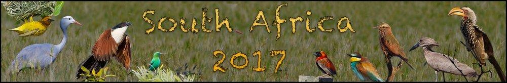 CB South Africa banner.jpg