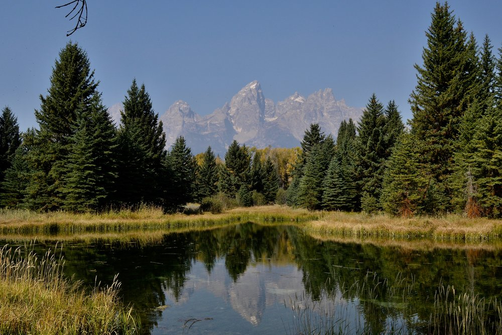 Schwabacher Landing-Jackson Hole-View to West.jpg