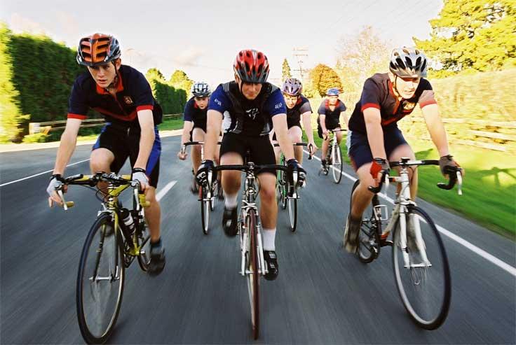 3_Cycling_Companions1.jpg