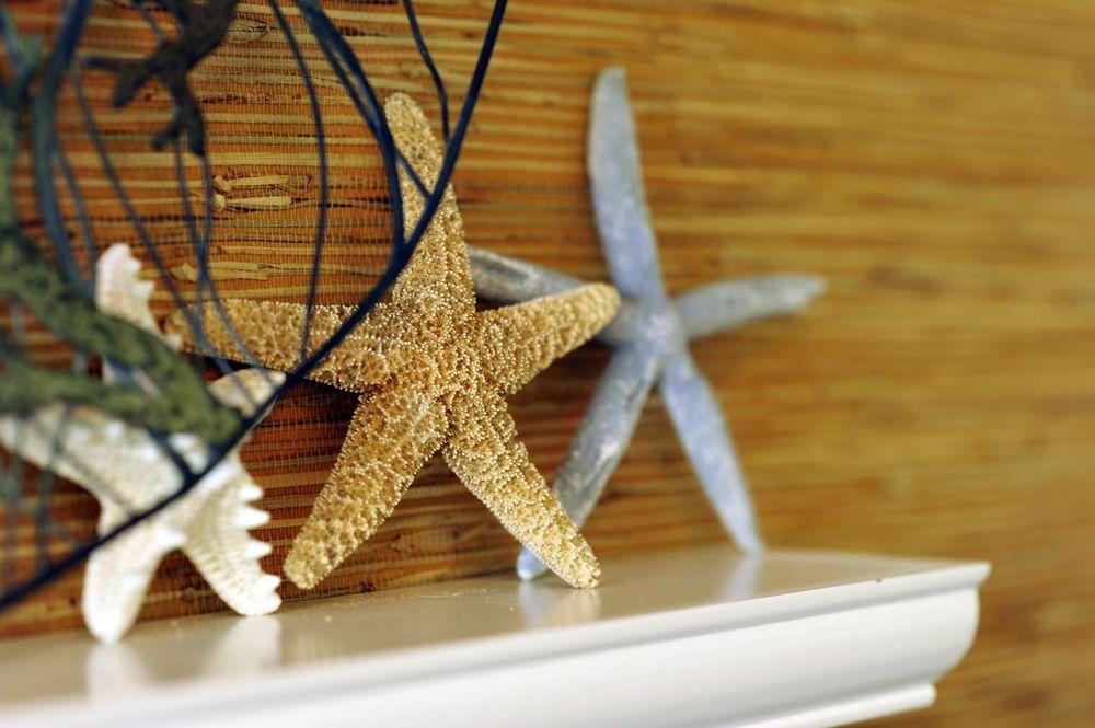 BungalowStar-fish.jpg