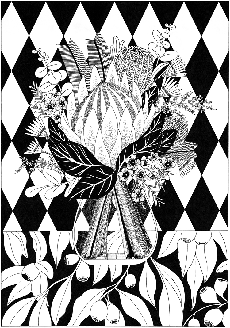Black And White Limited Edition Art Print King Protea Claire