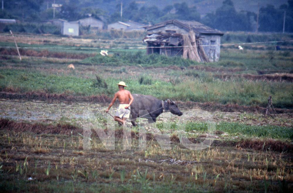 Farming 1.jpg
