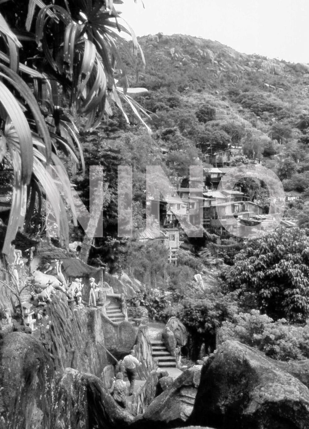 Hillside1.jpg