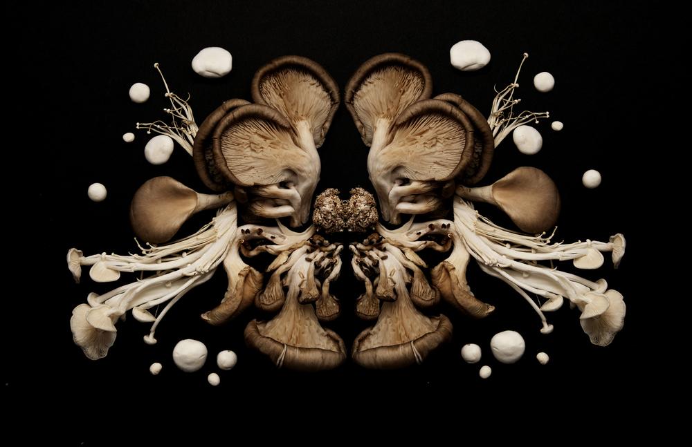 Mushroom ink blot.jpg