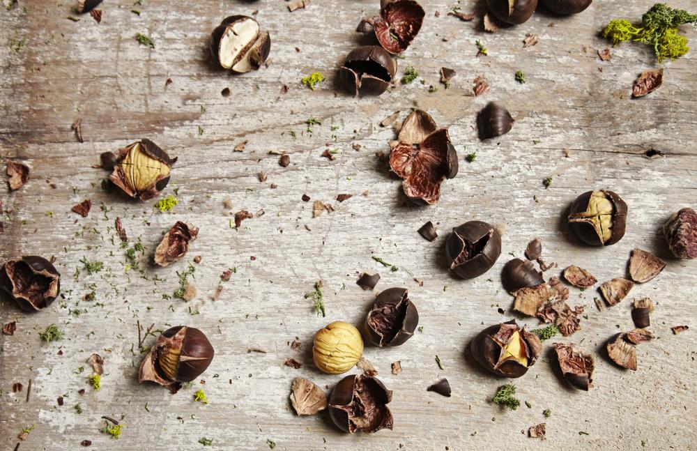 Chestnut spread.jpg