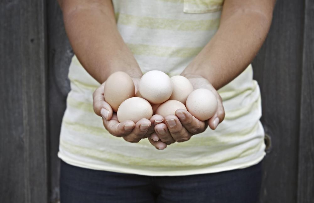 Egg hand.jpg