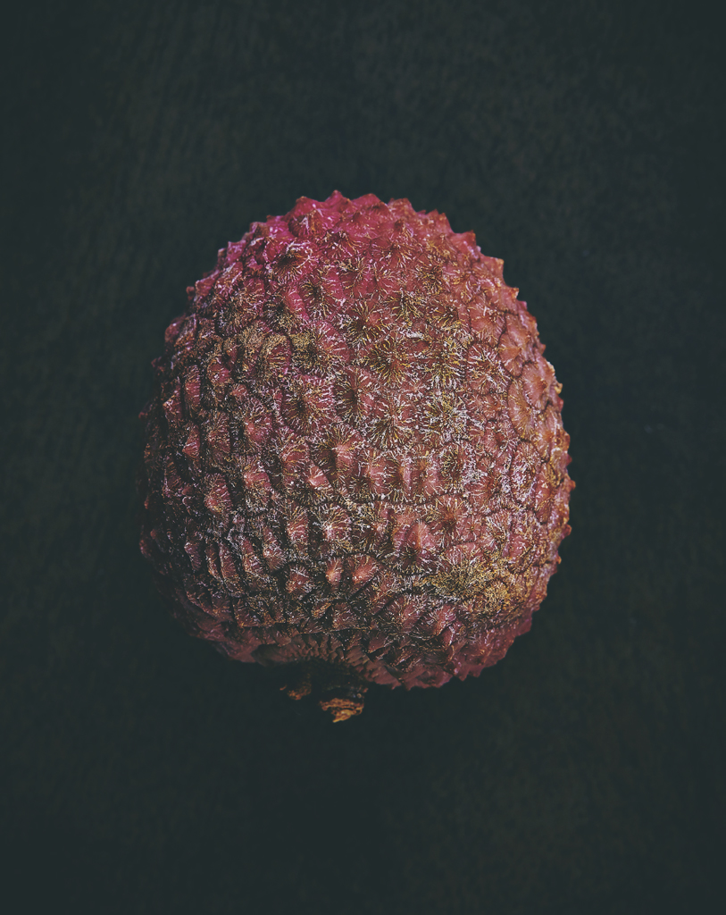 Alien fruit_1.jpg