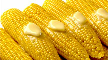 Corn-on-the-Cob.jpg