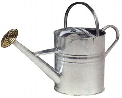 watering_can_large.jpg