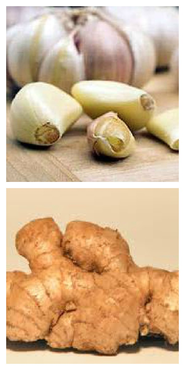 Ginger and garlic are spices that are healing.