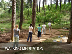 walking-meditation.jpg