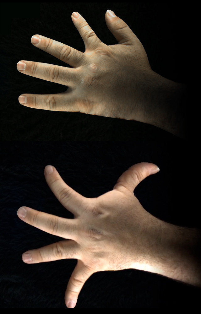 AugmentedHandSeries