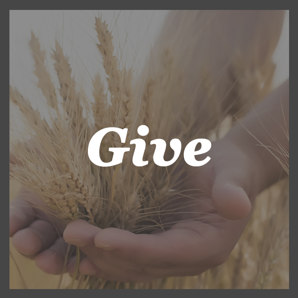 Give - Giving at OAG is simple and secure.