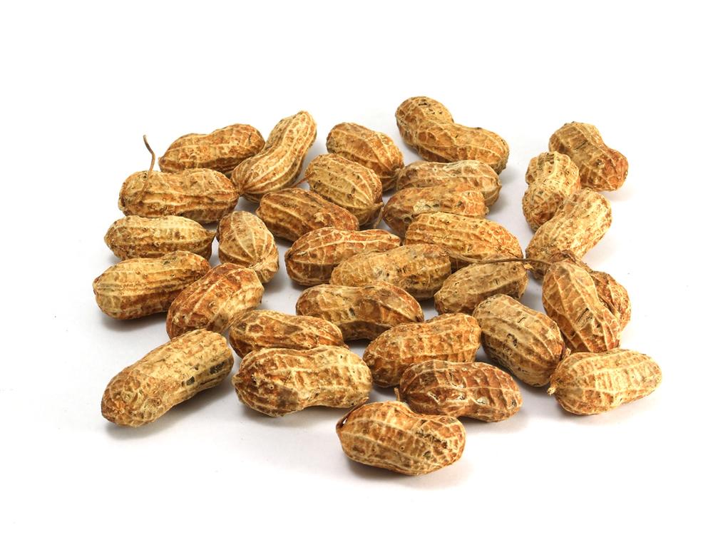 NUTS (PEANUTS)