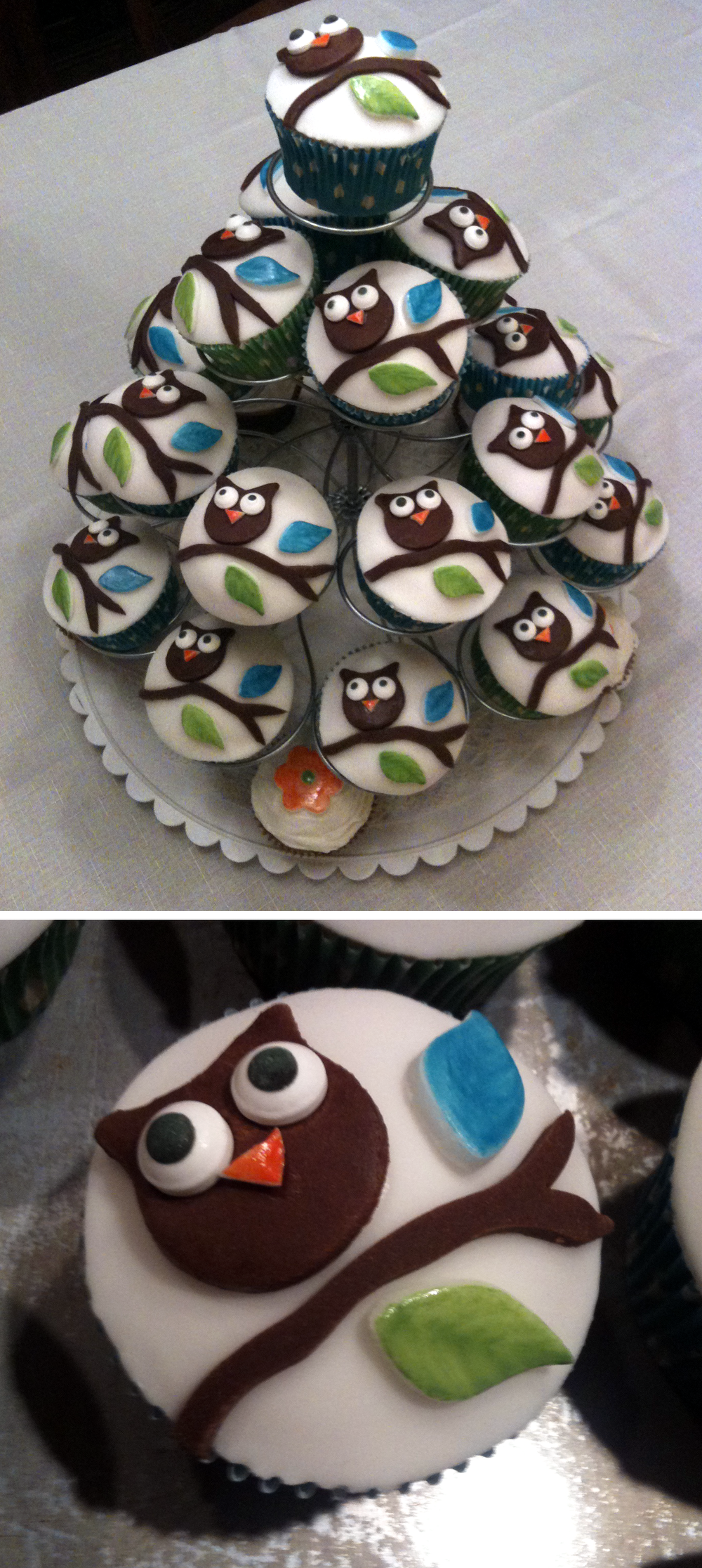 Baby_Shower_Owl_Cupcakes.png