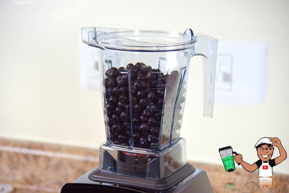 VitAMIX EXPLORIAN SERIES (E310) REVIEW