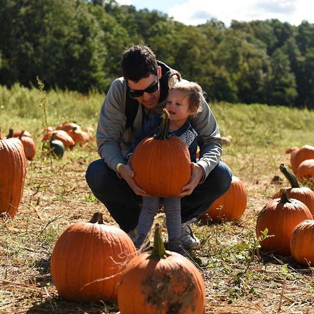 Pumpkin pickin' 📷 @jennlaumann