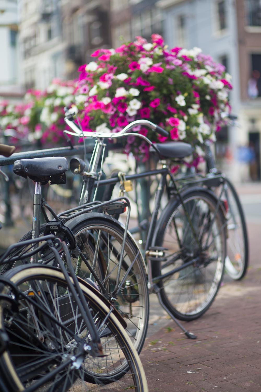 Amsterdam-0616.jpg