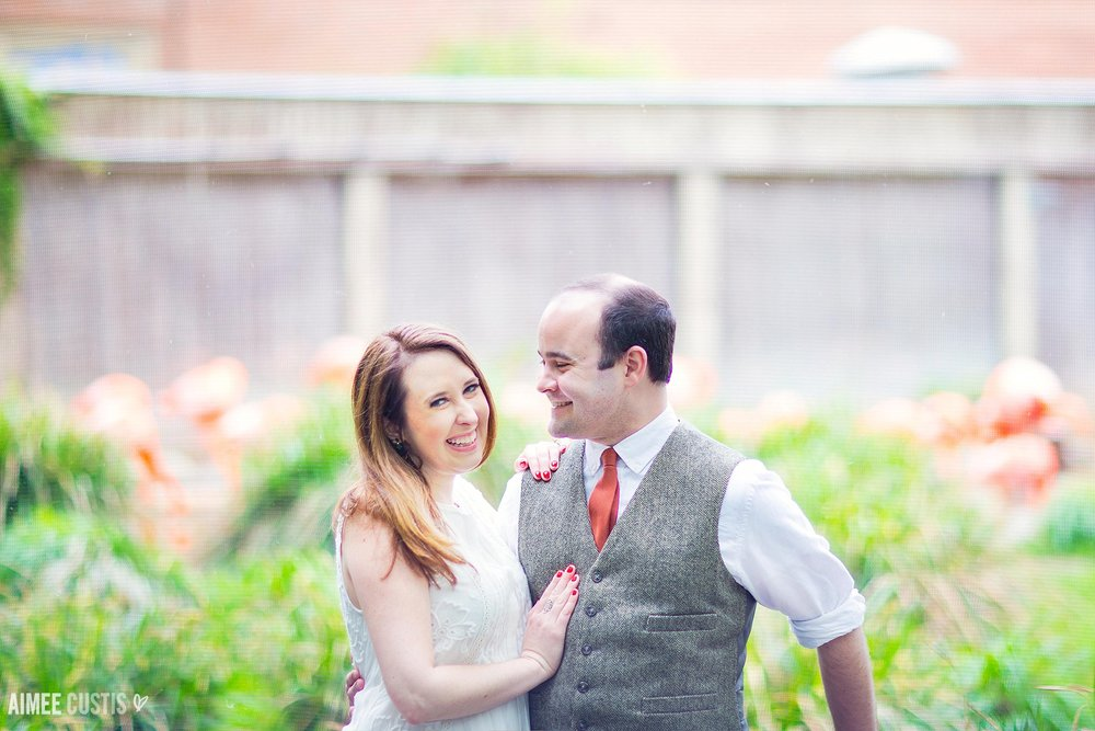 Smithsonian National Zoo engagement photography