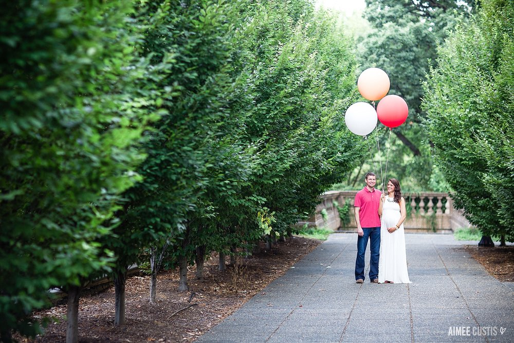 washington dc maternity photography