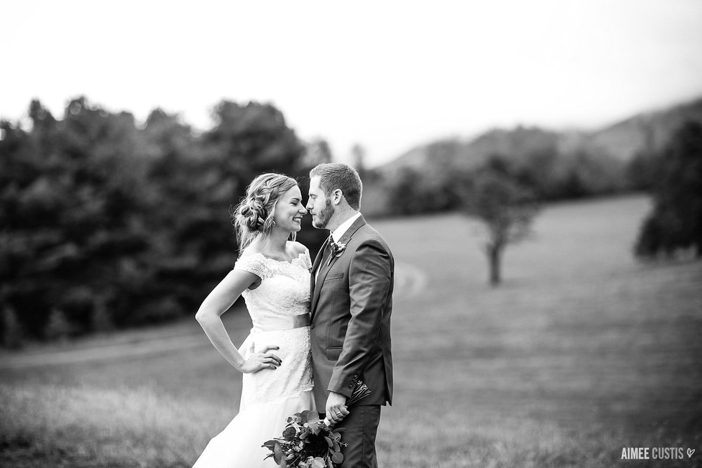 best Virginia wedding photographers