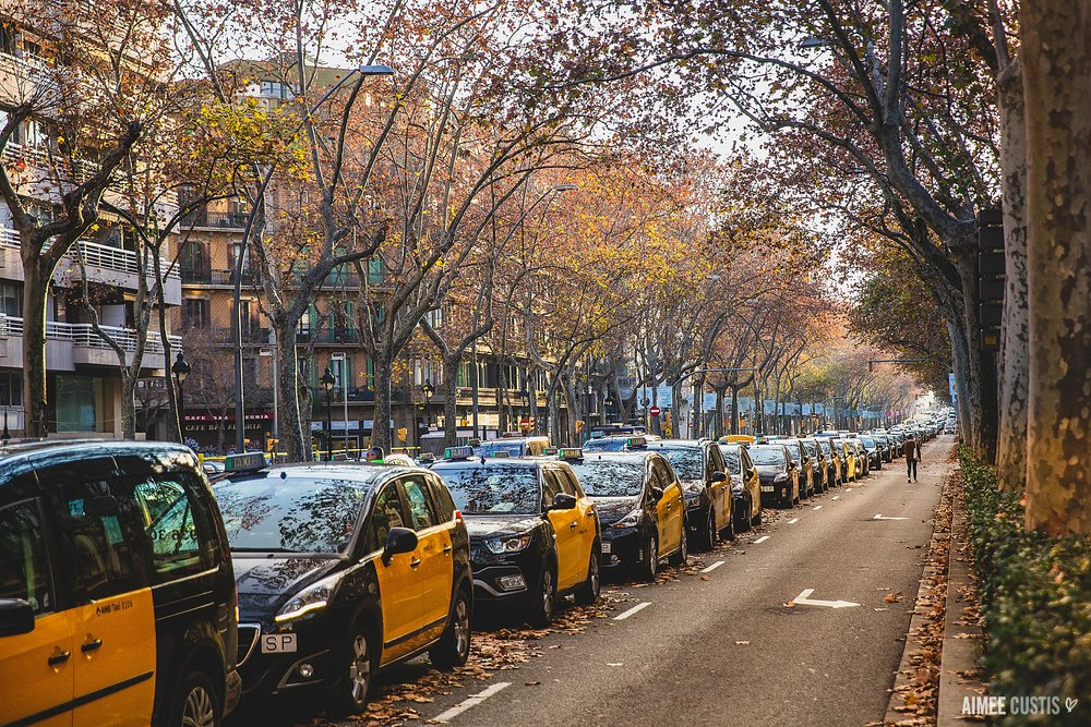The taxi strike.