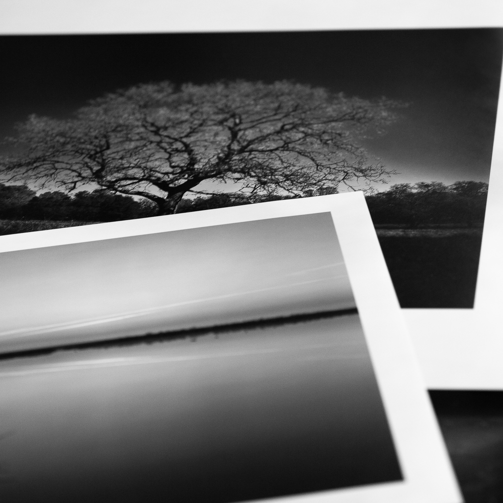 prints.jpg