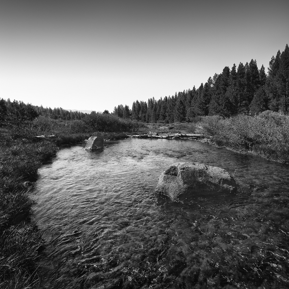 Run, Little Truckee River, Sierra County, California