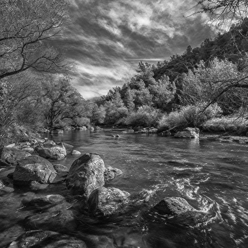 Upper Putah Creek, Study 1