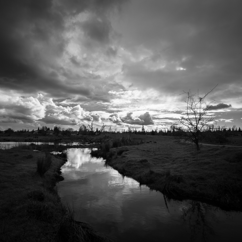 Storm Clouds Over Mahany Wetlands