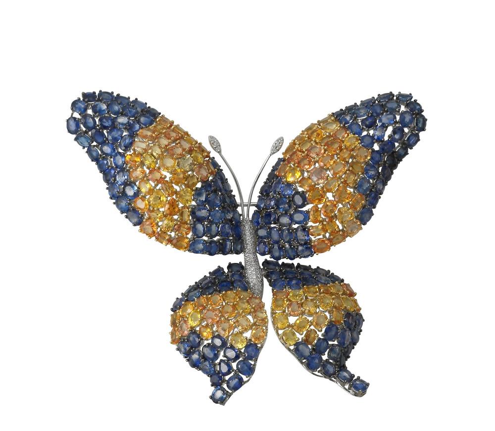 ButterflyBCH.jpg