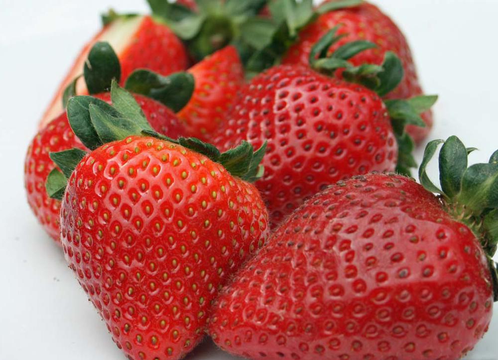 sweet-strawberry-wallpapers-1024x768_JPG.jpg