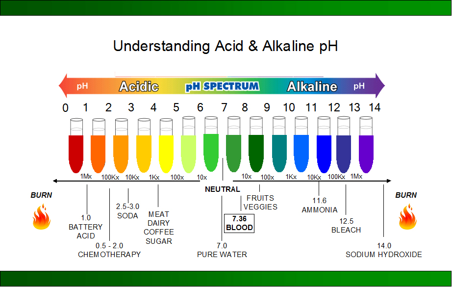 Understanding_Acid_and_Alkaline_pH.jpg