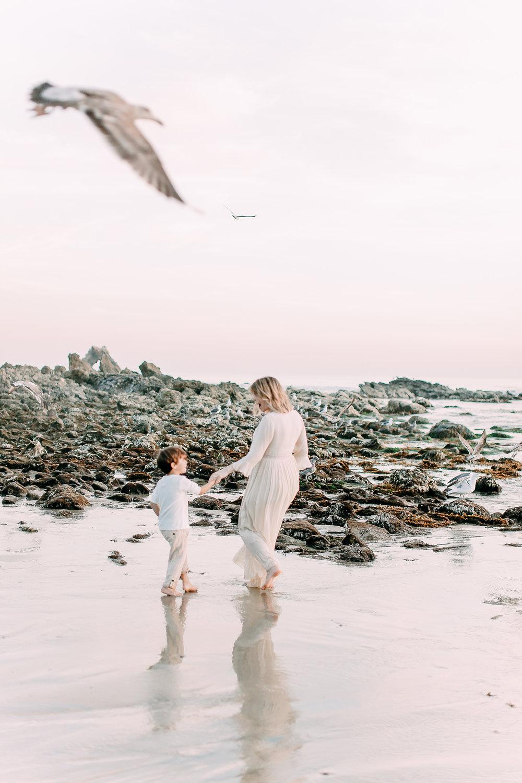 Cori-Kleckner-Photography- Pirro Maternity Session 1-202.JPG