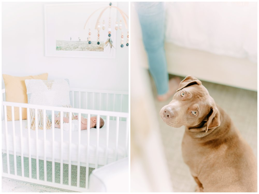 In-home-newborn-Session_Orange_county_newborn_photographer_cori_kleckner_photography_laguna_beach_family_session_0748.jpg