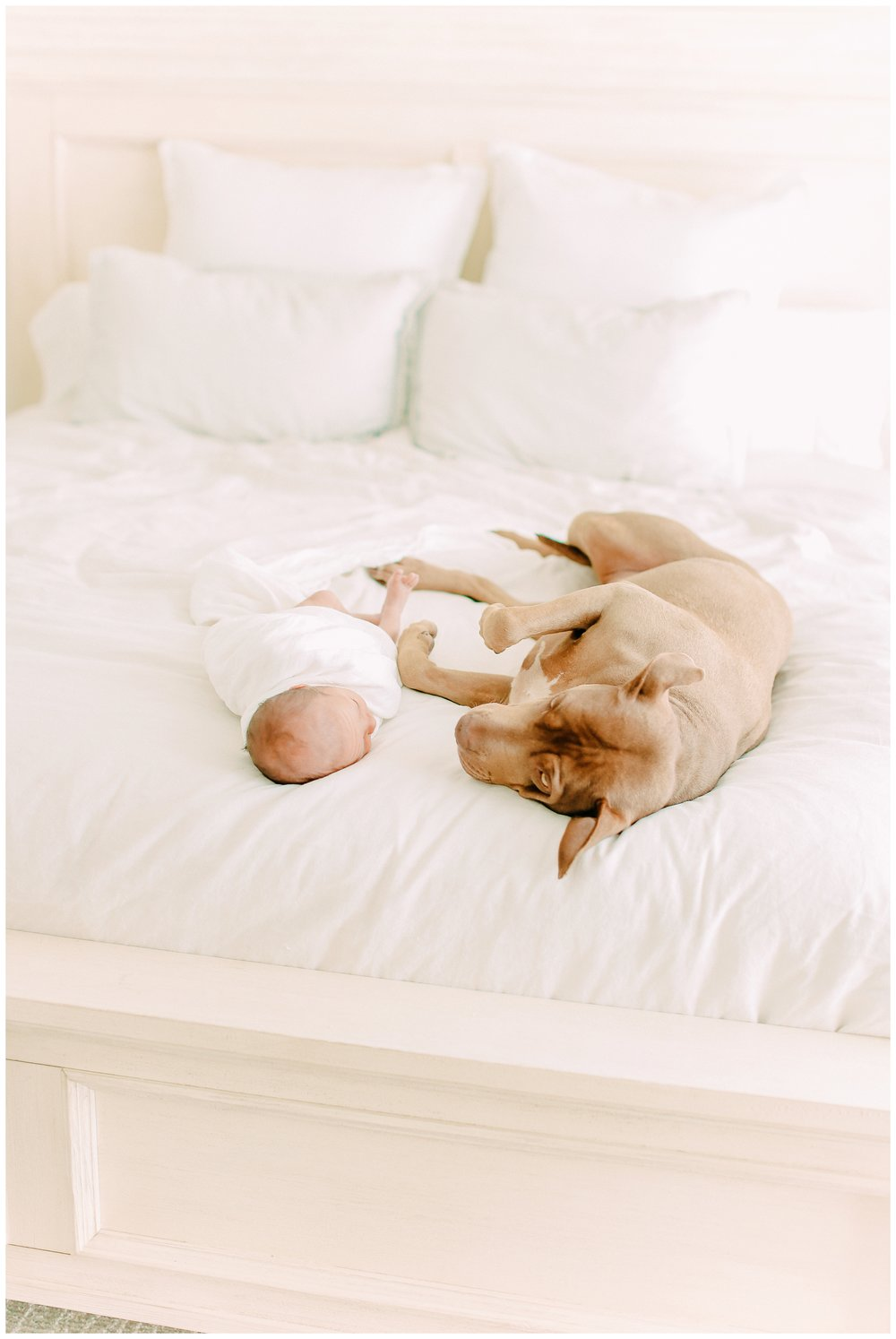 In-home-newborn-Session_Orange_county_newborn_photographer_cori_kleckner_photography_laguna_beach_family_session_0757.jpg