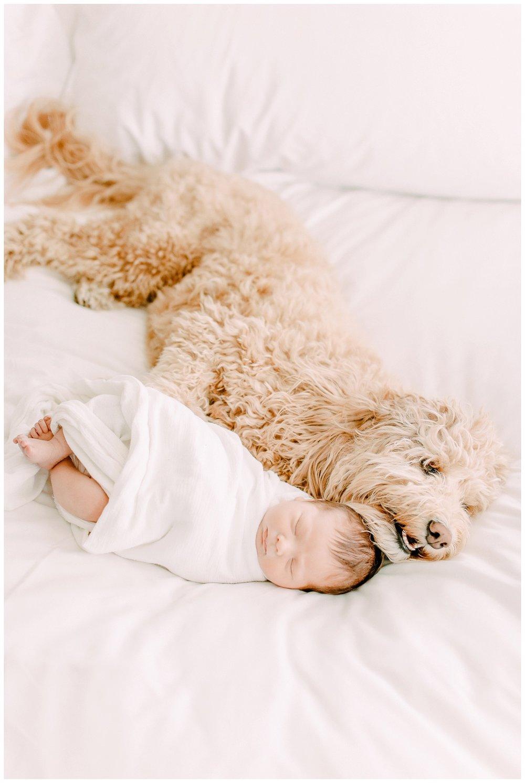 Newport_Beach_Newborn_Photographer_Lifestyle_Newborn_Photography_in_home_session_Cori_Kleckner_Photography_0971.jpg