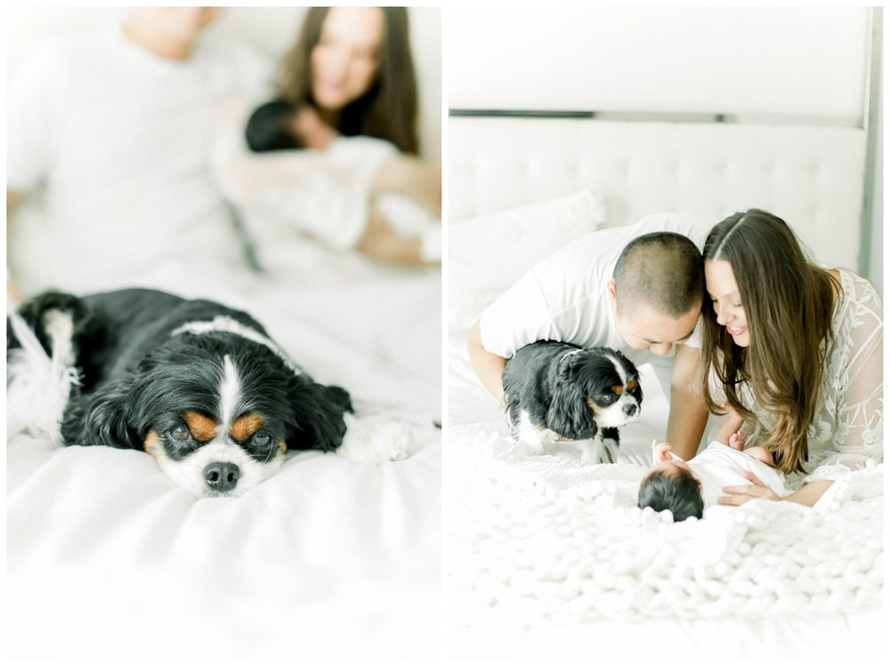Newport_Beach_Lifestyle_in-Home_Photographer_Newport_Beach_Newborn_Photography_Orange_County_Newborn_Photographer_Cori_Kleckner_Photography_Orange_County_in-home_Photography__2002.jpg