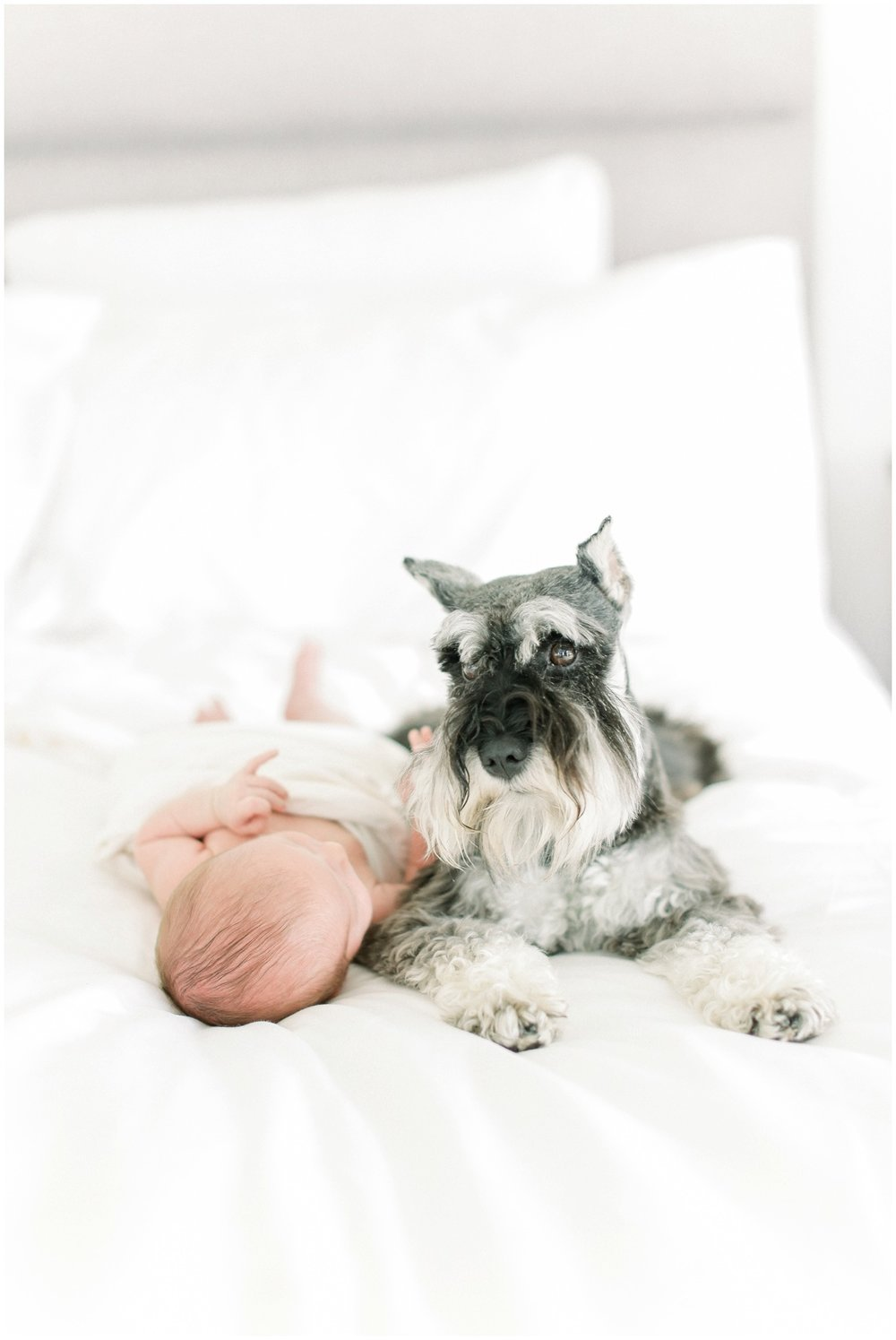 Newport_Beach_Newborn_Photographer_Newport_Beach_Maternity_Photographer_Orange_County_Family_Photographer_Cori_Kleckner_Photography_Huntington_Beach_Photographer_Maile_Trumbo_Mark_Trumbo_Photos_2689.jpg
