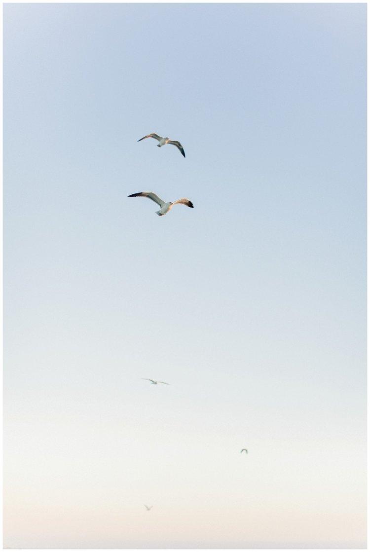 Newport_Beach_Maternity_Photographer_Newport_Beach_Newborn_Photography_Orange_County_Newborn_Photographer_Cori_Kleckner_Photography_Orange_County_in-home_Photography__2126.jpg