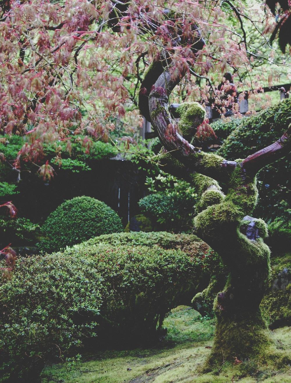 Sculpture IV1.jpg