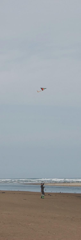 Flying 21.jpg