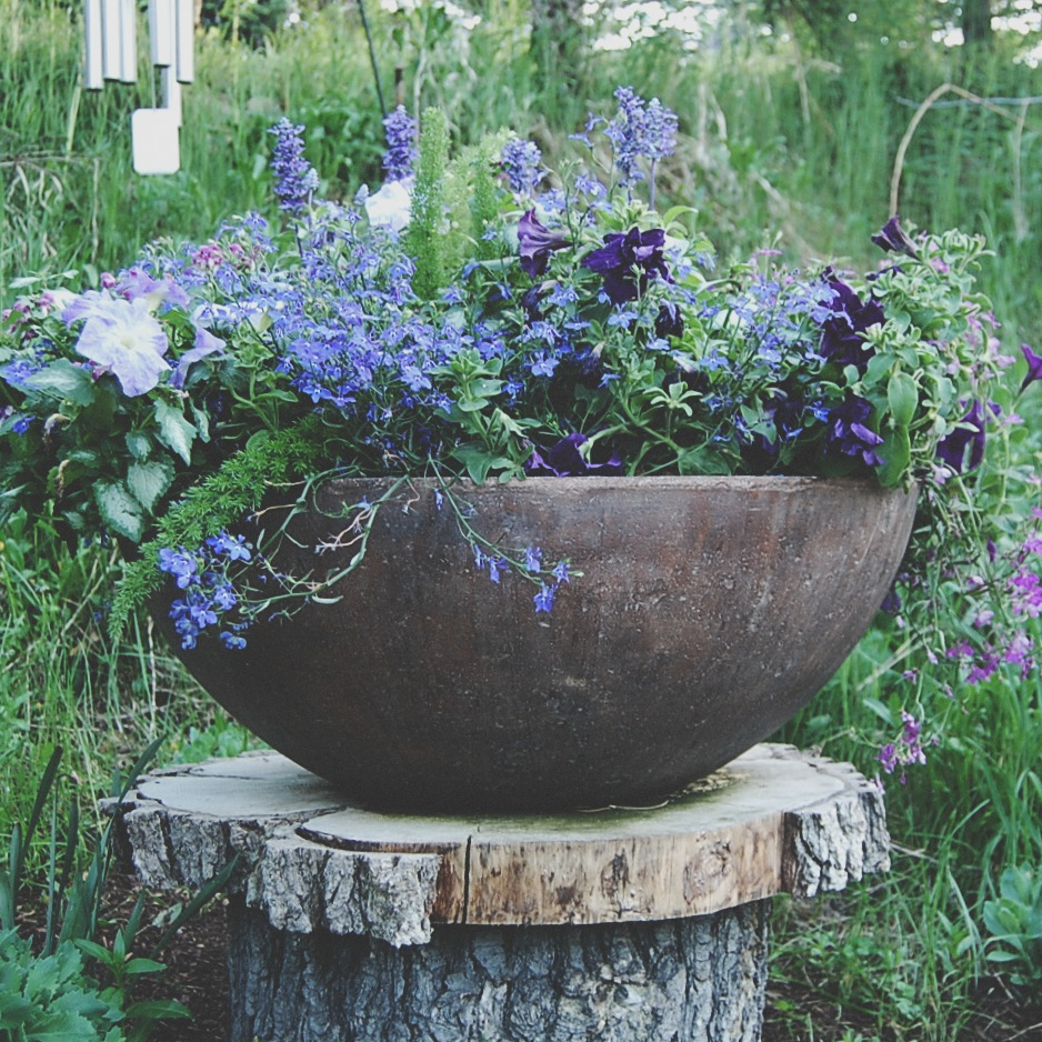 The Purple Planter
