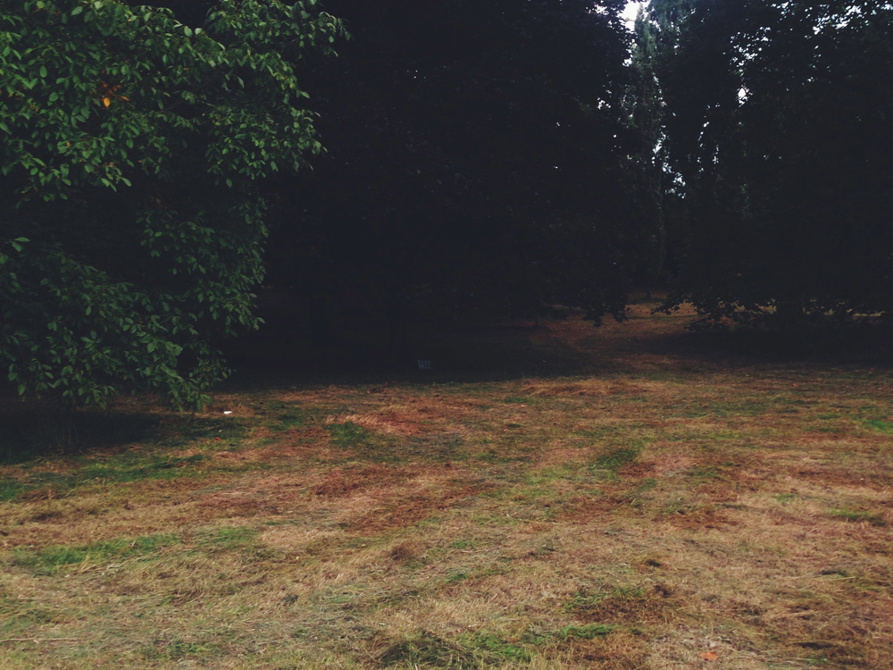 Running through the mown fields of Hyde Park
