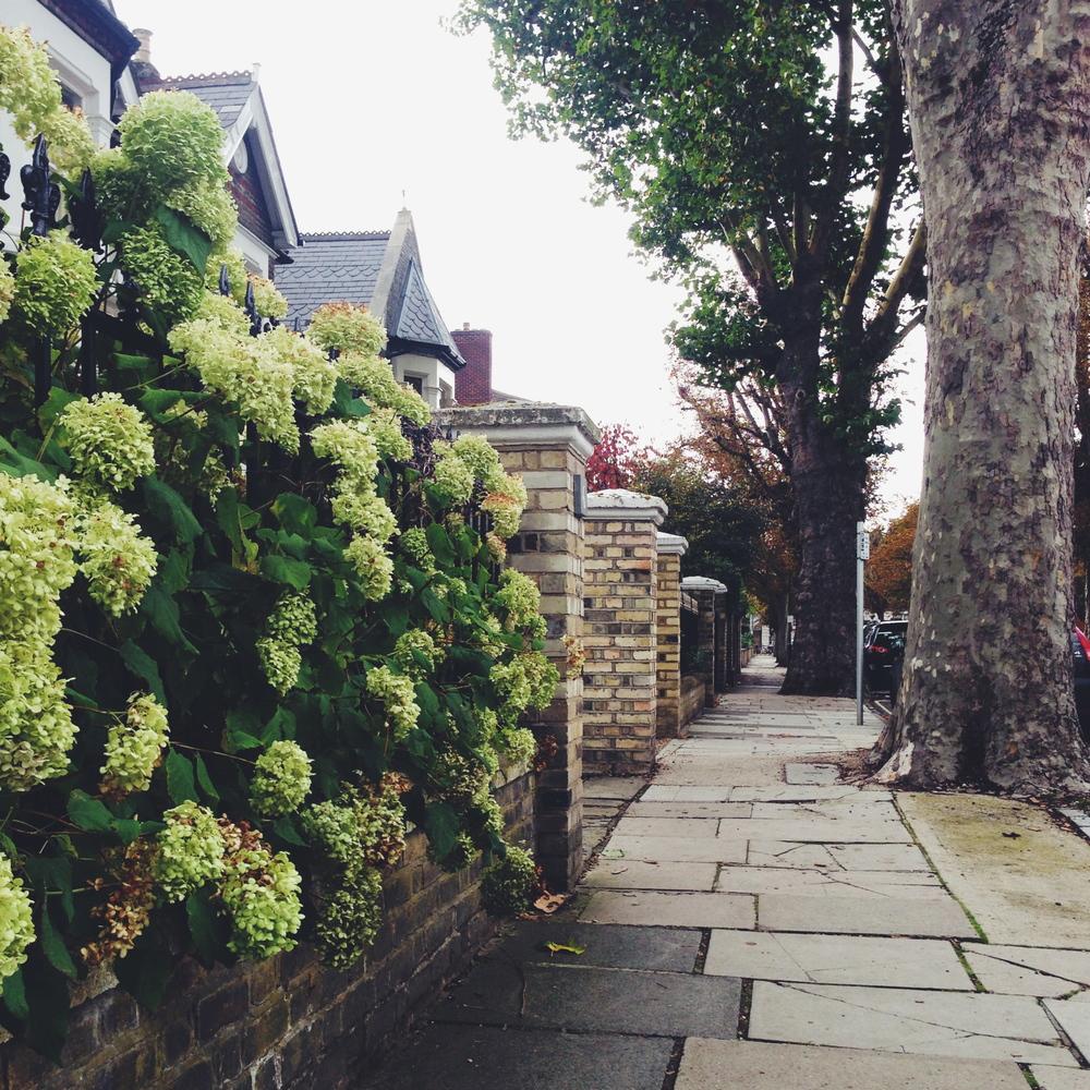 Walking to Kew Gardens