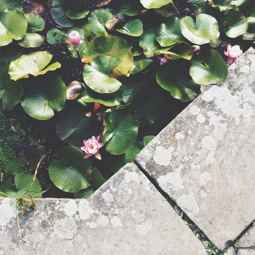 Great Dixter - the Sunken Pond