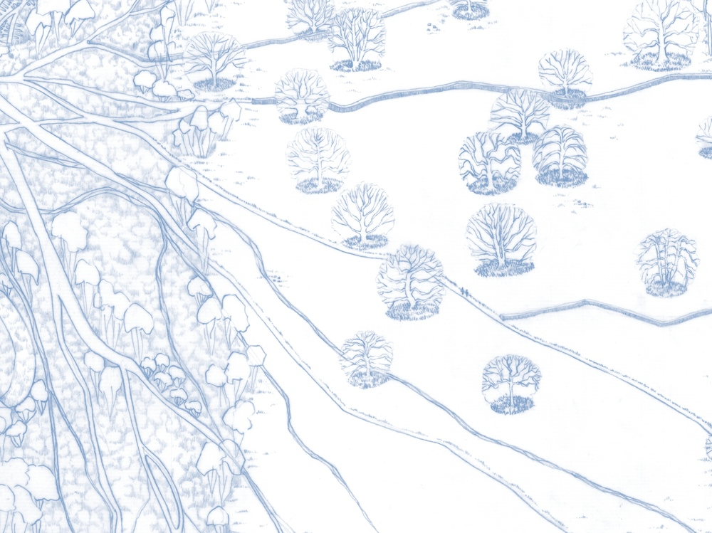 D5 Wedgewood Blue 2.jpg