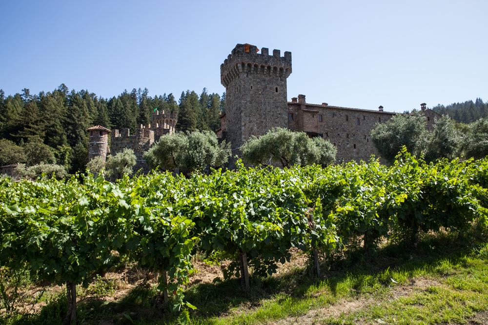 Castle-6.jpg
